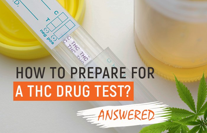 How to Prepare for a THC Drug Test [Answered]