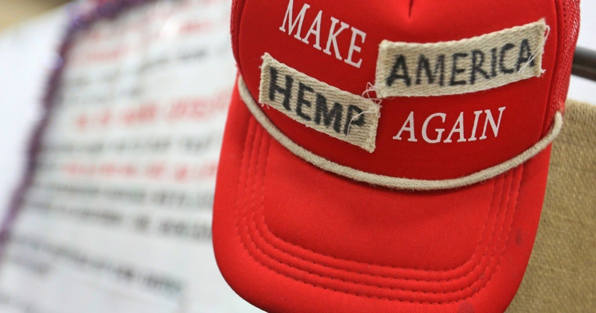Is Texas ready to decriminalize marijuana? The answer might be found at the Republican convention | Texas Legislature