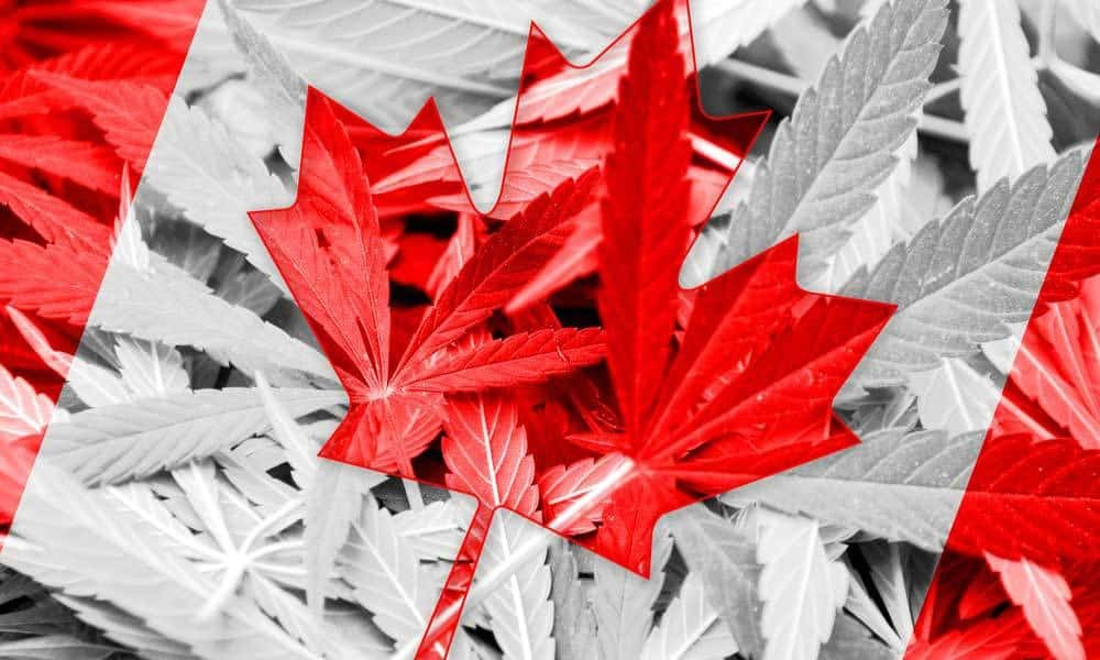New Regulations May Spark Canada's Craft Cannabis Revolution