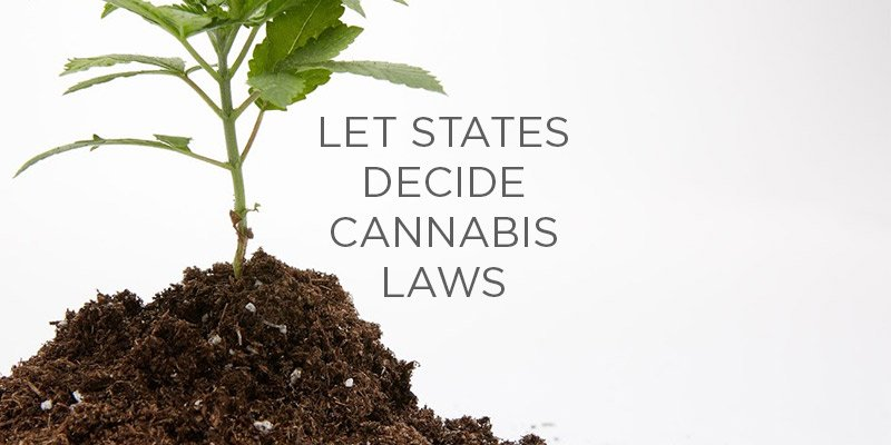 Poll Finds Something A Divided America Can Agree Upon: States Should Set Marijuana Policy