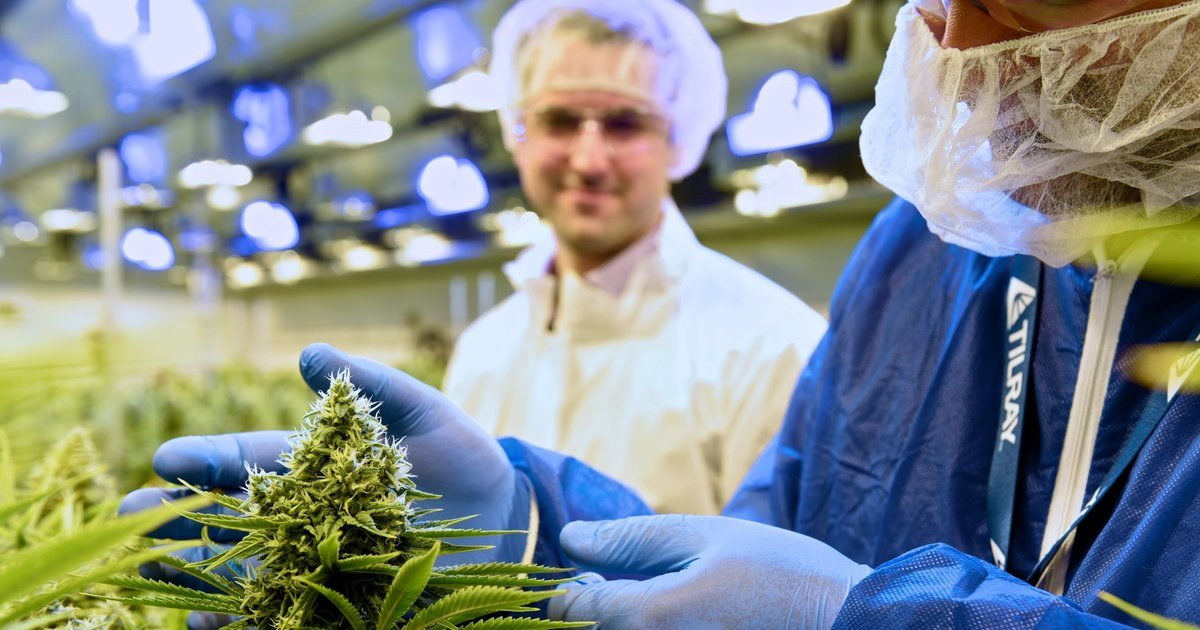 Seattle's Privateer launches $100M IPO for its Canadian marijuana company