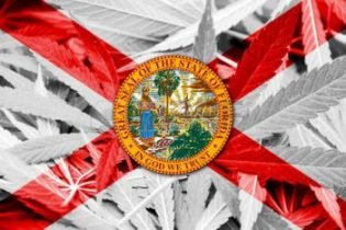 Second Florida business suspended from processing medical marijuana