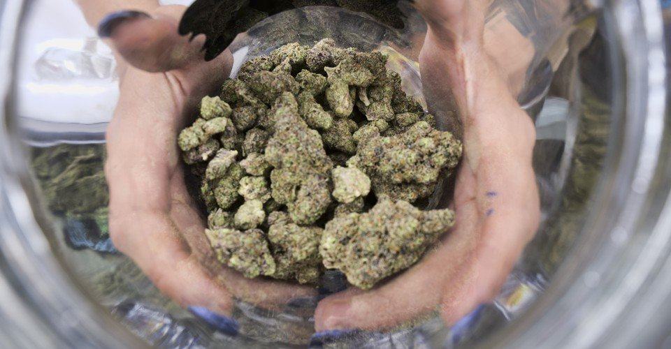 The New Model for a Health-First Approach to Legalizing Weed