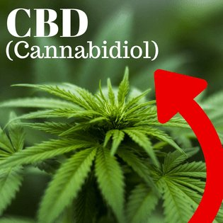 What Is CBD (Cannabidiol) & How Does It Work... Everything You Need To Know