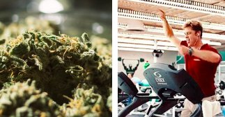 11 Things To Know About Getting High Before a Workout