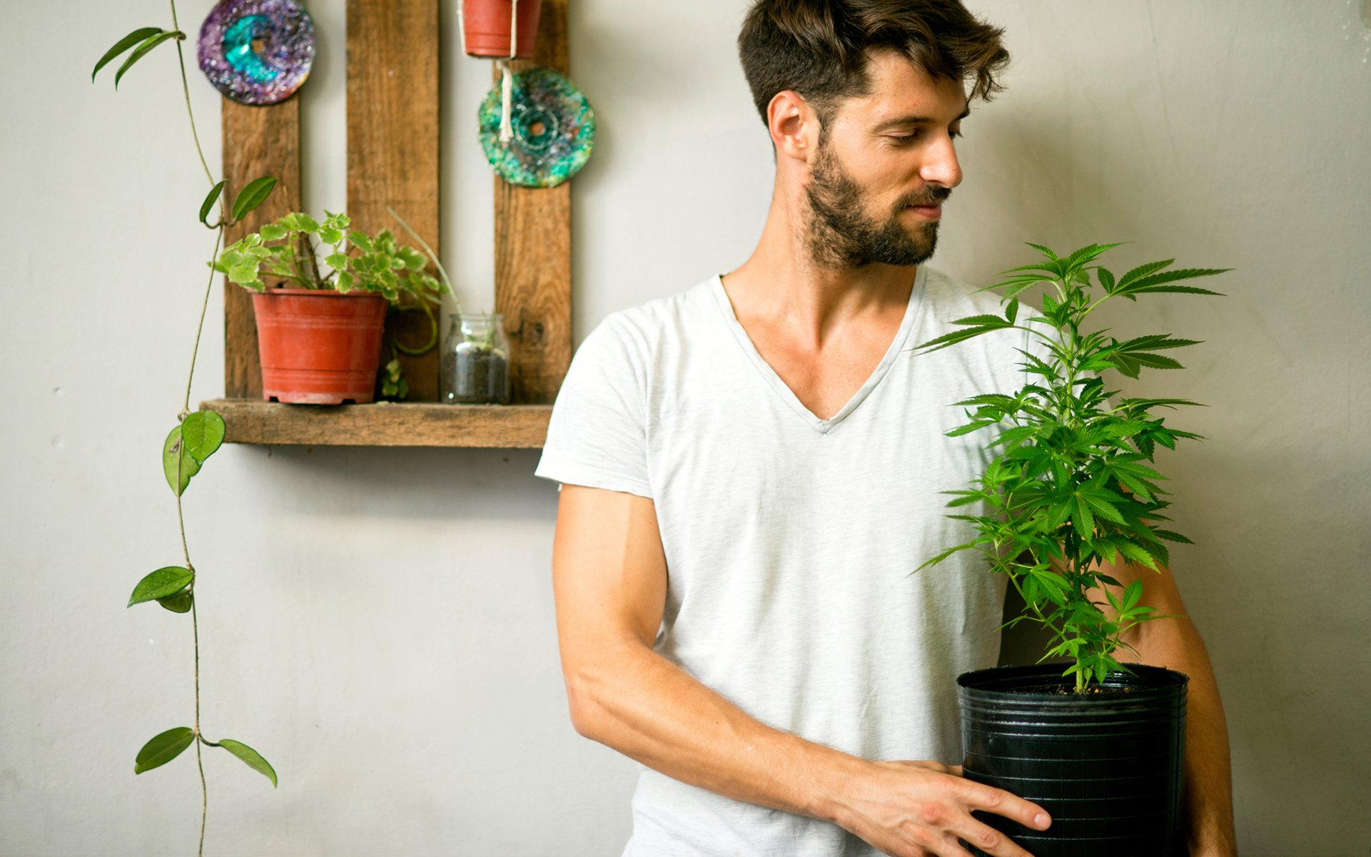5 Reasons Why You Should Consider Growing Your Own Cannabis | Leafly