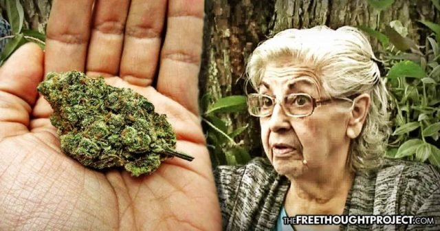80-Year-Old Grandma Thrown In Jail For Smoking Pot In Her Own Home To Treat Her Arthritis | urhealthinfo