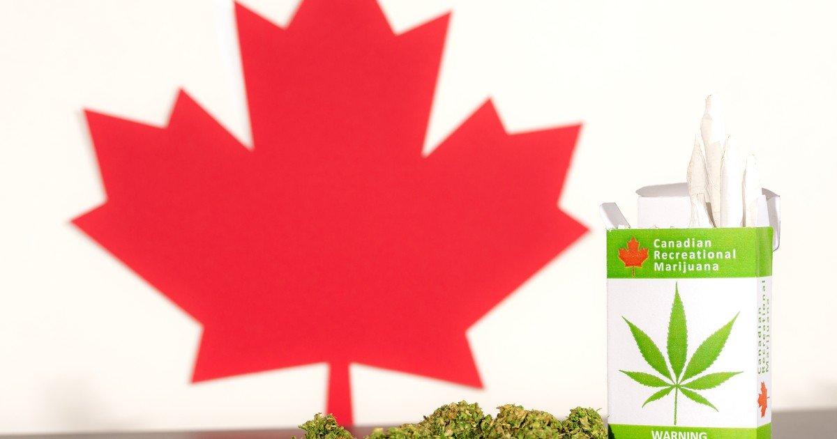 Better Marijuana Stock: Aurora Cannabis vs. Tilray