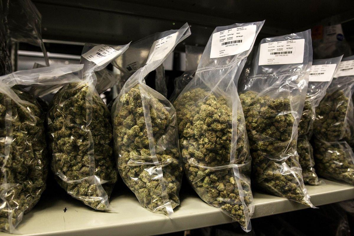 Corona Beer Giant Puts $3.8 Billion Bet on U.S. love of cannabis
