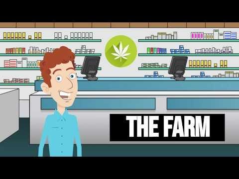 Legal Marijuana Marketing - Customer Loyalty & Email Marketing Solution