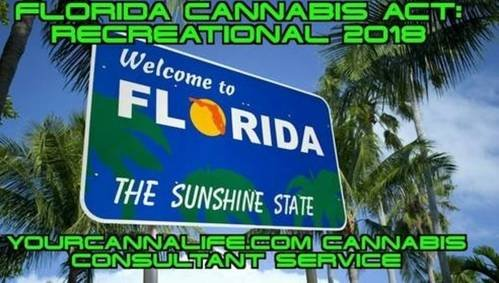 Make weed legal in florida. That's all.