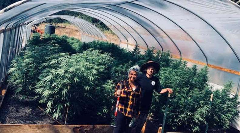 Oregon State Bar Investigating Cannabis Attorney Amy Margolis and Two Others