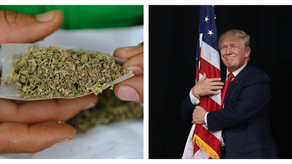 Trump's Secret Anti-Weed Committee