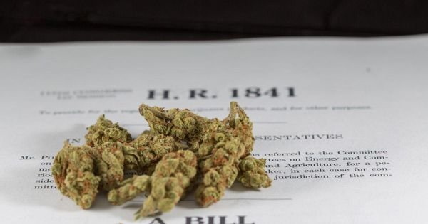 Vermont Governor Signs Marijuana Legalization Into Law?