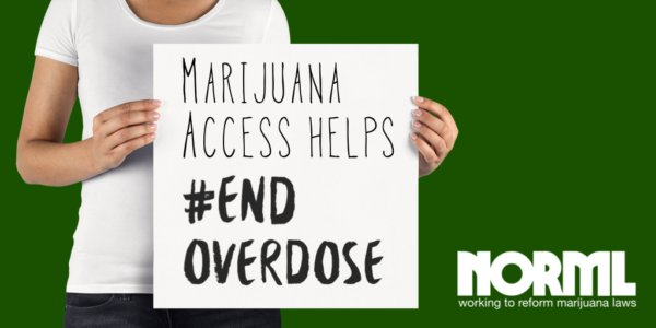 Access to Marijuana Shows Promise in Combating America's Opioid Crisis