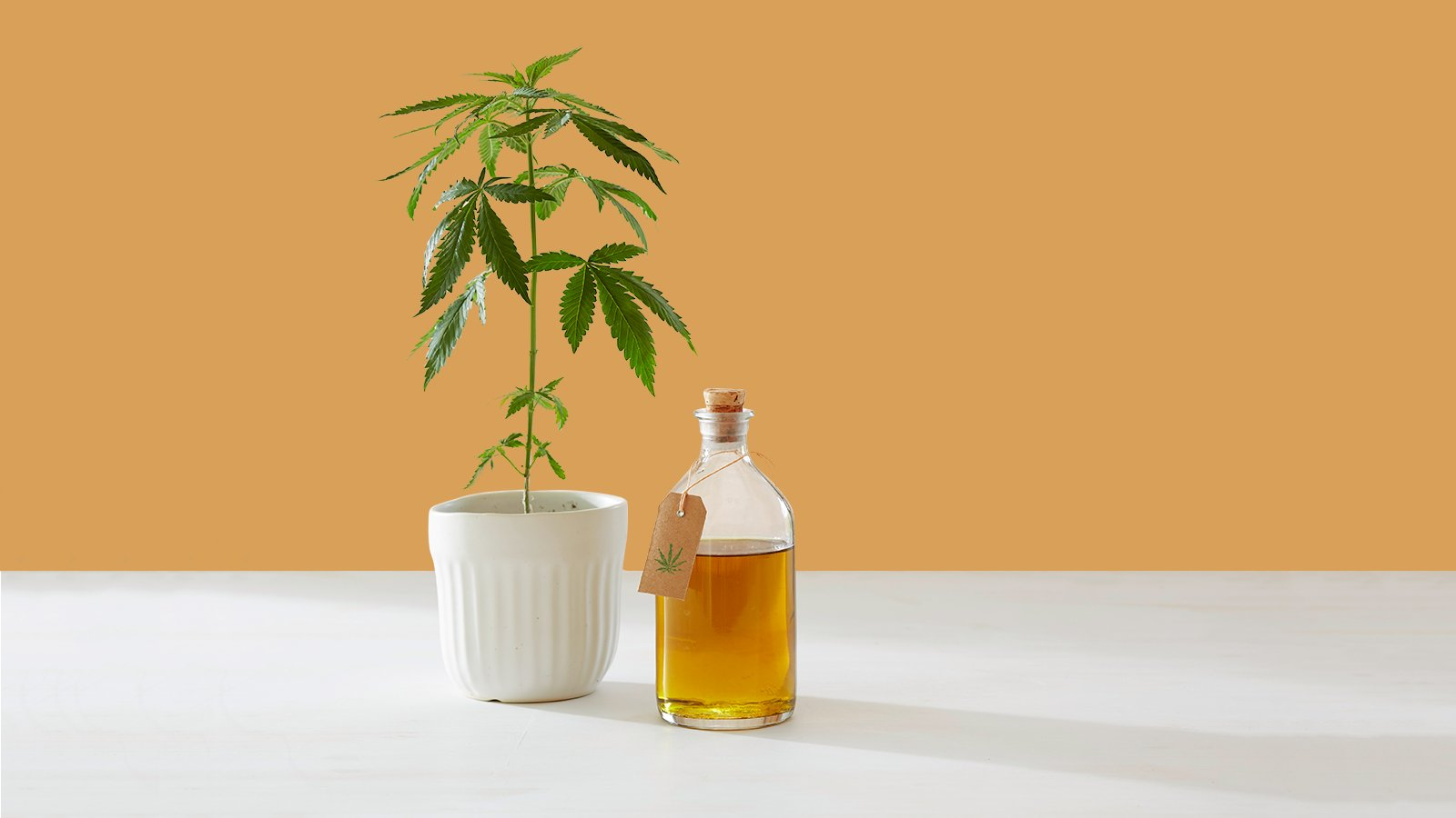 Does CBD Really Do Anything?