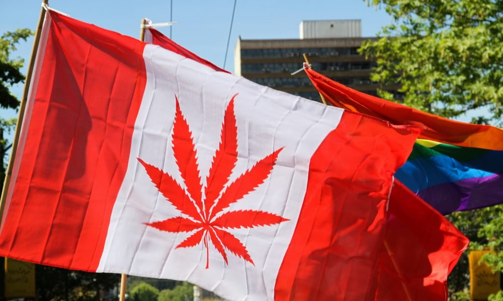 Lawmaker Presses Trump Official On Banning Canadians From US For Marijuana