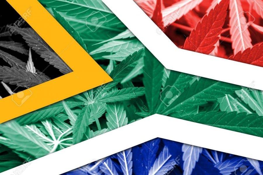 Legalization of Marijuana in South Africa: a Tale of South Africa Marijuana