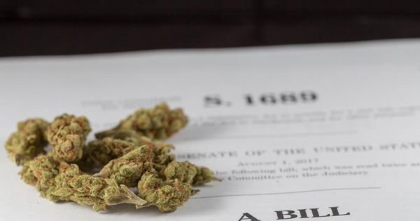 Marijuana Bill Approved By Congressional Committee, Despite Drug Conviction Restriction Dispute