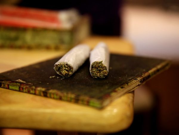 Marijuana use in college remains at highest level in 3 decades, University of Michigan study says