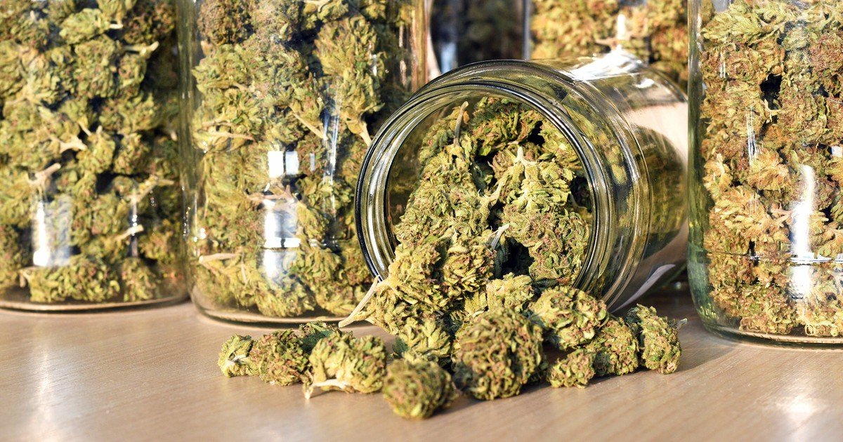 Predicting the 10 Largest Marijuana Producers in Canada by 2020