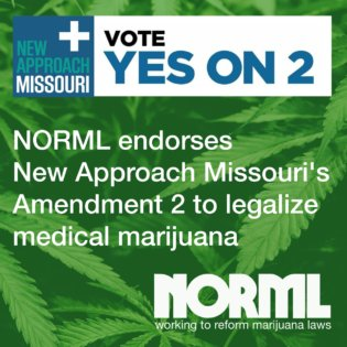 Register to Vote to Support Marijuana Law Reforms this November