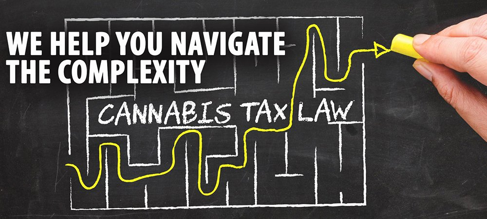 The Importance Of Having The Right Financial Team For Your Cannabis Business