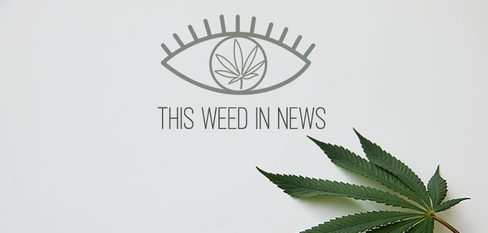 The Week In Weed: More Bayou dispensaries; Veterans Request More Medical Marijuana Research; New York Seeks Public Input on Legalization