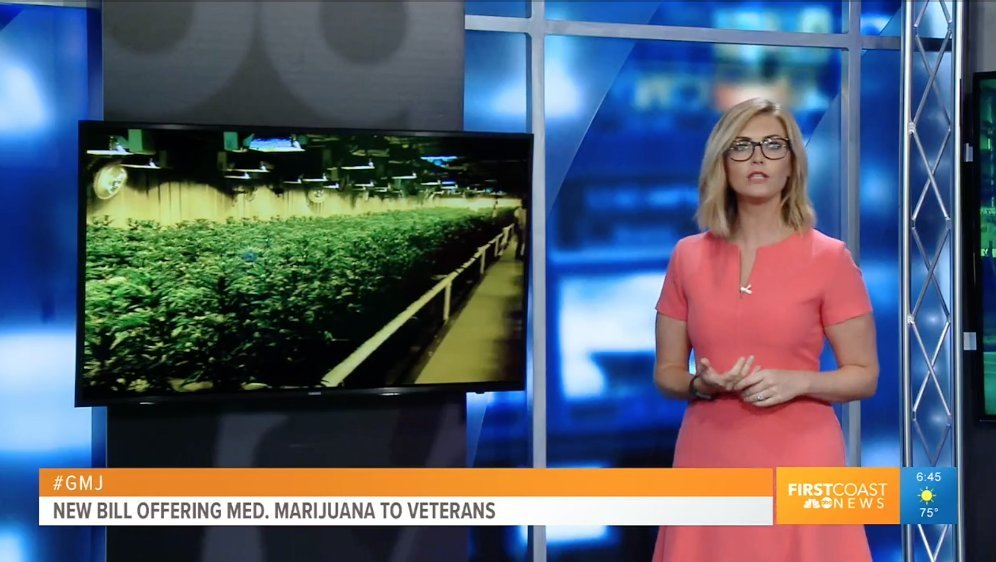 "U.S. Sen. Bill Nelson: ""Our veterans have put everything on the line for our country and should have access to all available medical treatments—including medical marijuana. """