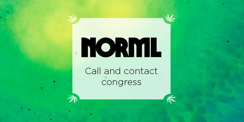 Want to Make Marijuana Access Legal and Safe? Heed NORML's Call and Contact Congress. | Marijuana