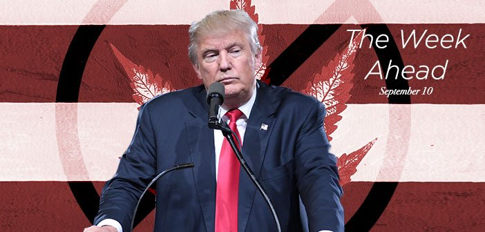 Will Trump Flip Flop on Marijuana & State's Rights? The 'Resistance' to Cannabis Legalization In Trump's White House
