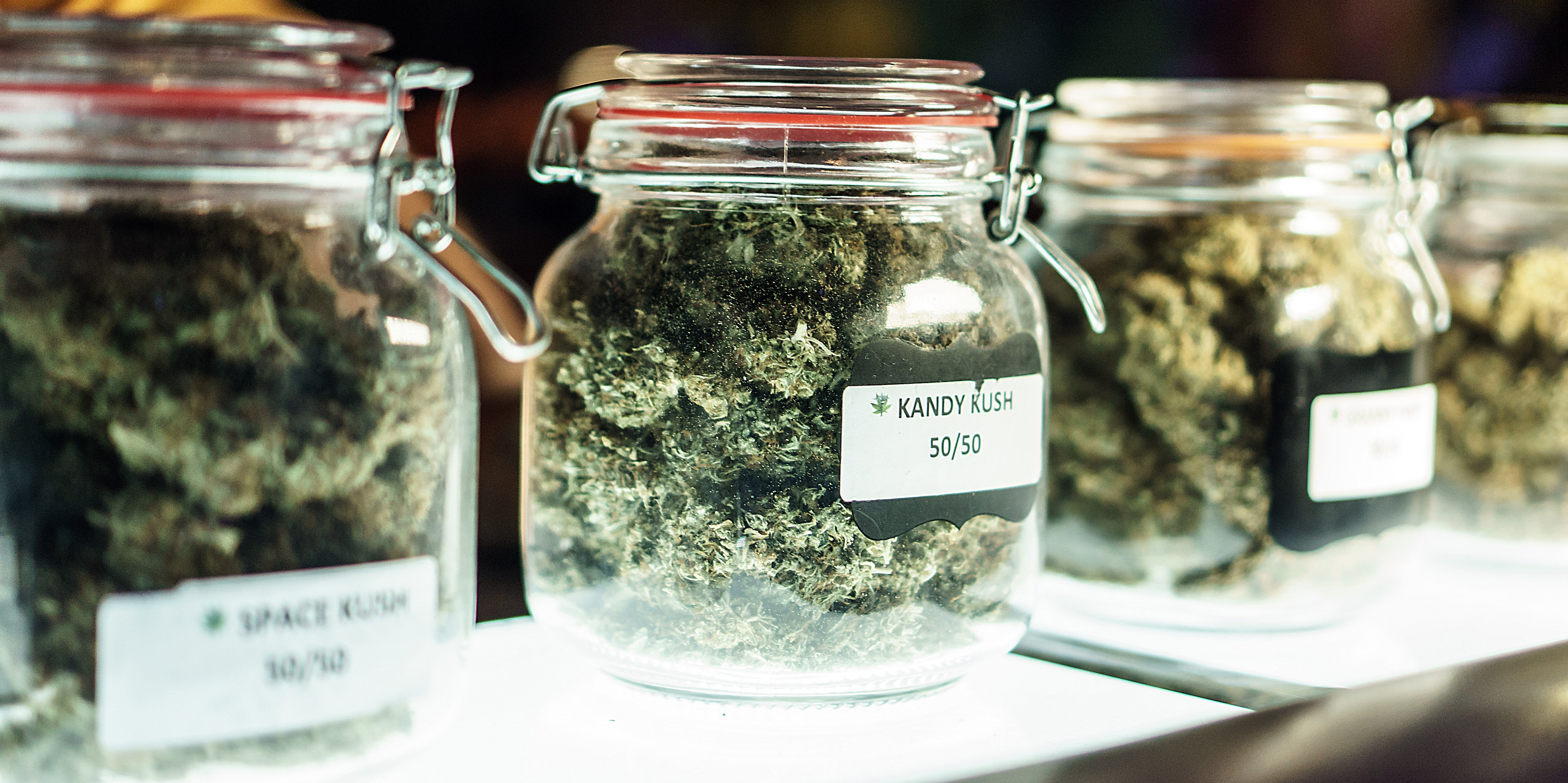 6 Things to Know Before You Even Set Foot in a Cannabis Dispensary