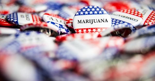 Another Big Election Year For Marijuana As Candidates Recognize Voters Want Legal Weed