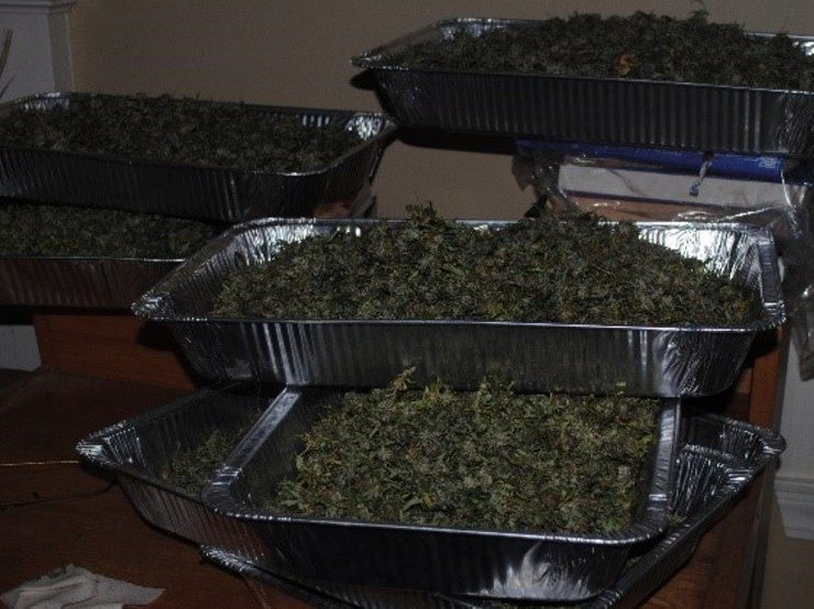 Compassion Party candidates for governor, AG arrested with 48 pounds of pot
