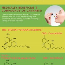 Get access to amazing cannabinoids with a medical cannabis card in Orange County