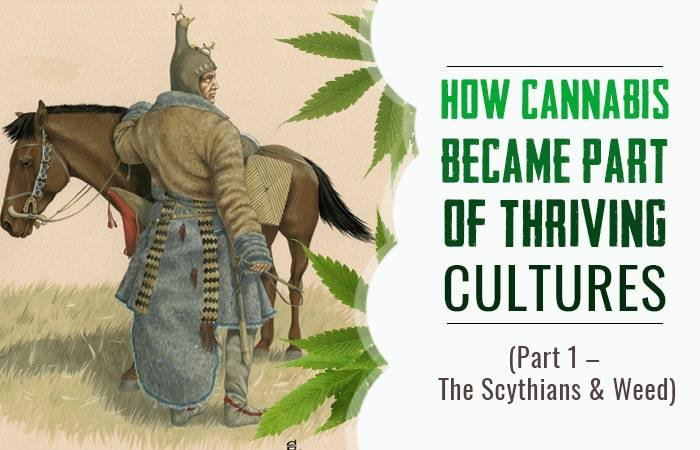 How Cannabis Became Part of Thriving Cultures - The Scythians and Weed