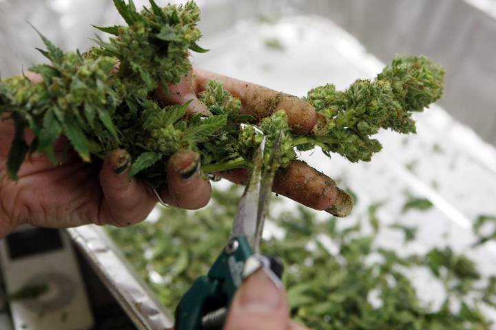 In major shift, the U.S. says it won't ban Canadian pot workers