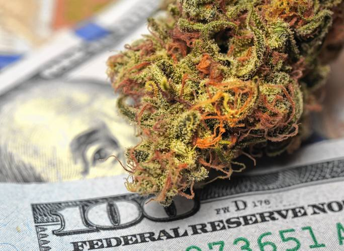 Marijuana business owners share secrets to success