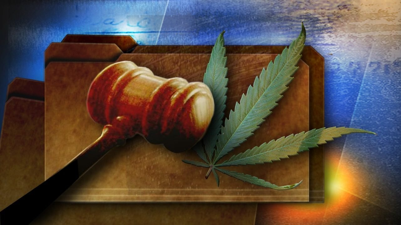 Scott appeals major medical marijuana ruling