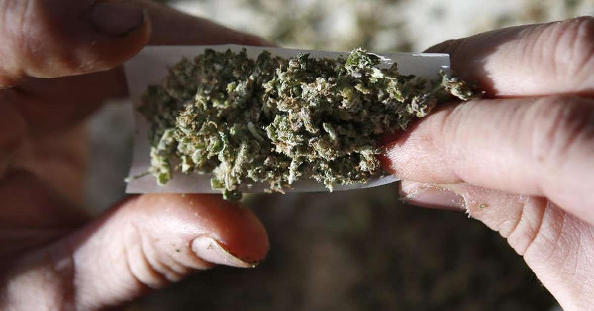 We asked Florida candidates if they've smoked marijuana. Here's what they said.