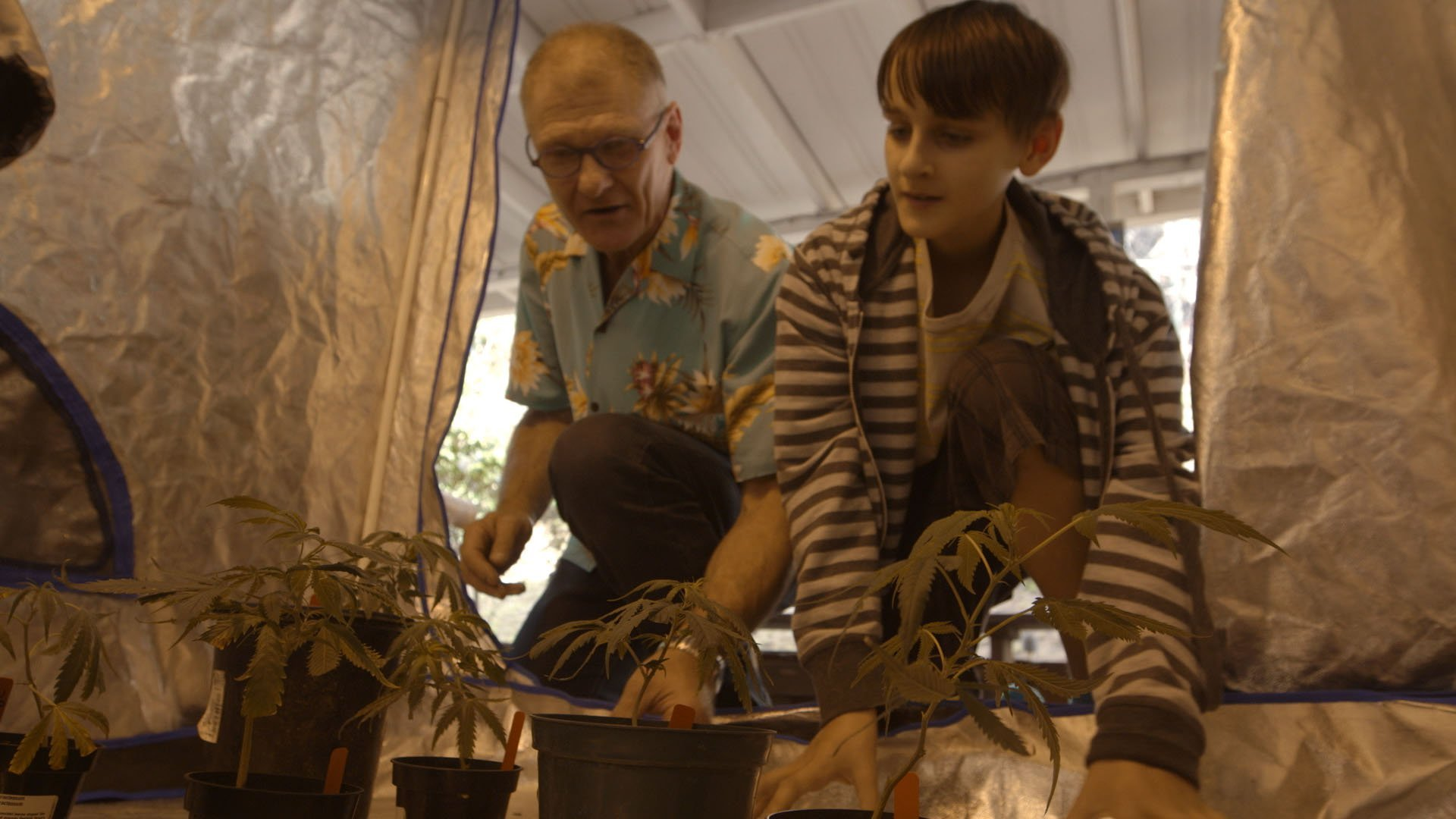 'Weed the People' Explores Medical Marijuana for Kids With Cancer