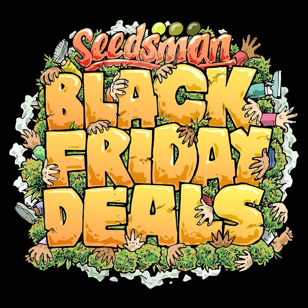 Black Friday Promotion 2018