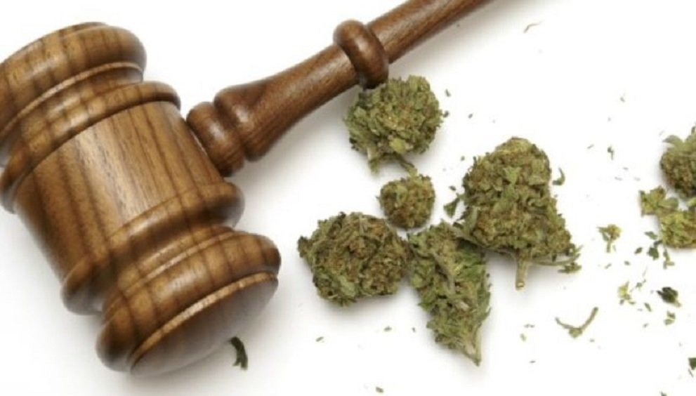 Cannabis Grower Wins Lawsuit Against Landowners Over Strong Smell