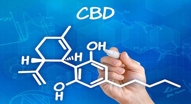 """Hoban Law Group: CBD Is Not A Controlled Substance – The """"Source Rule"""" Applies"""