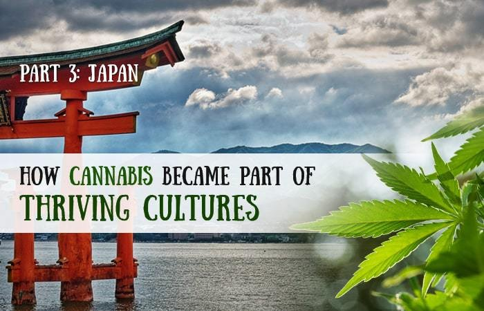 How Cannabis Became Part of Thriving Cultures: Part 3 - Japan