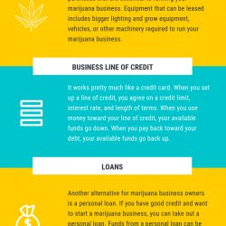 How to get Financing for Your Marijuana Business