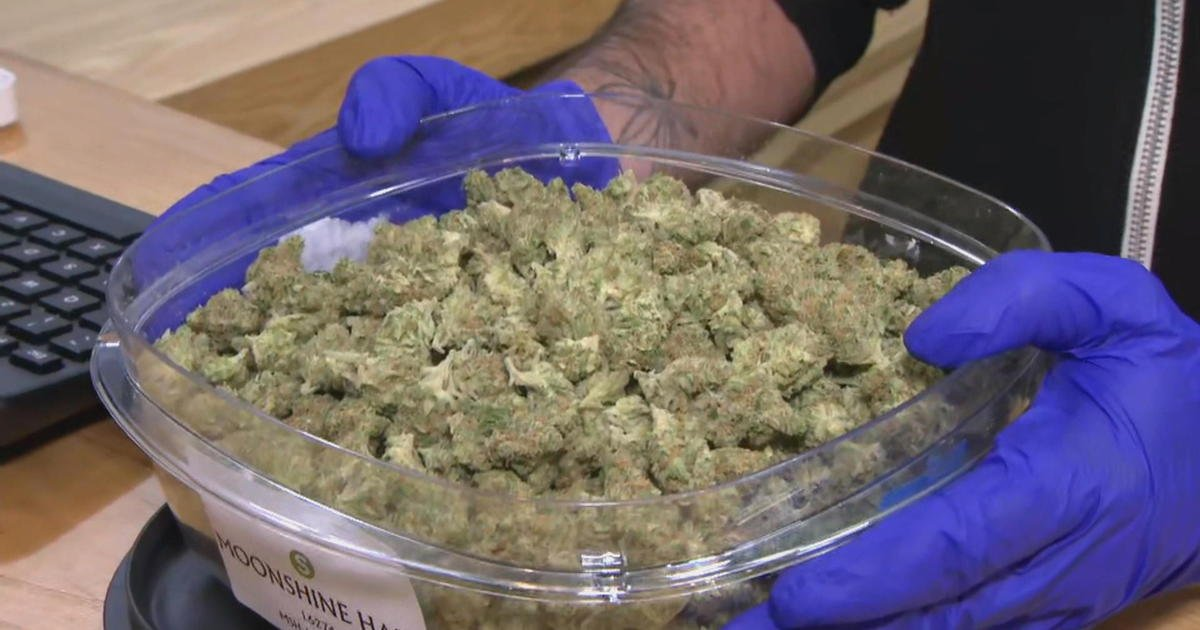 Massachusetts mayor first in line as recreational marijuana sales begin