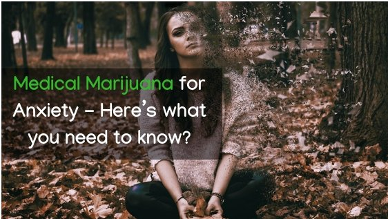 Medical marijuana for Anxiety – Here's what you need to know?