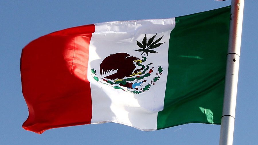 Mexican Supreme Court Rules That Cannabis Prohibition Is Unconstitutional