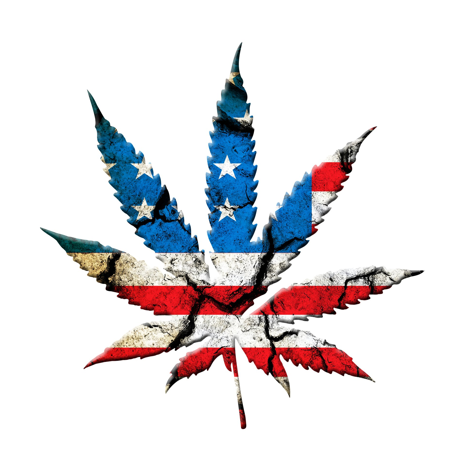 News over this past week will accelerate #marijuanalegalization in the US. #Mexico legalized #cannabis, #Democrats took back the House & #JeffSessions resigned.